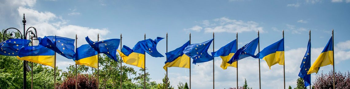 Голова Конотопського ІТ кластеру презентував реалізовані проекти на зустрічі з представником ЄС